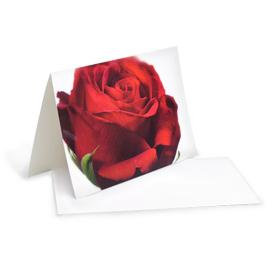 karte-rote rose